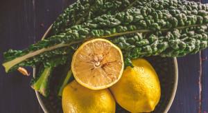 Zielona dawka zdrowia – Jarmuż marki Eisberg