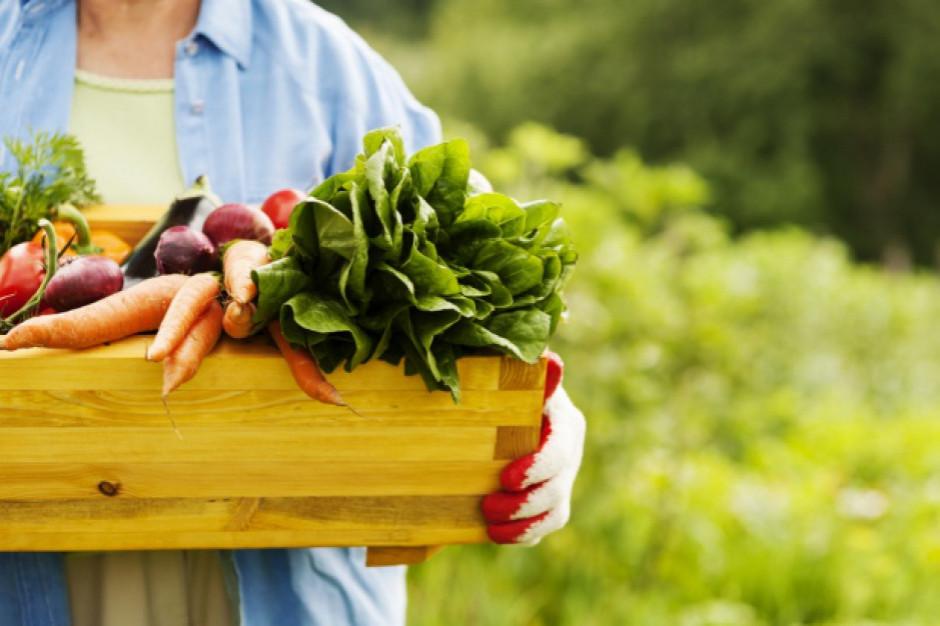 Rolnikom będzie łatwiej sprzedać restauracjom żywność