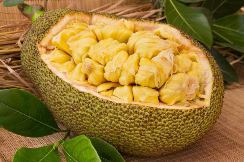 Dżakfrut - krótka historia niechcianego owocu, który podbija menu wegan i Instagram