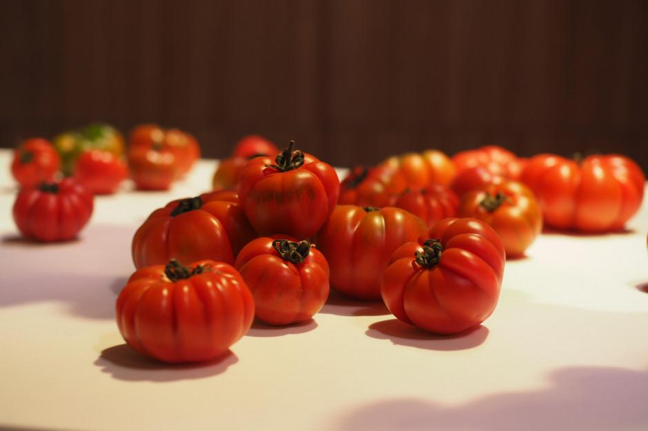 Nowojorska influencerka stworzyła wystawę z jedzenia podczas Milan Design Week