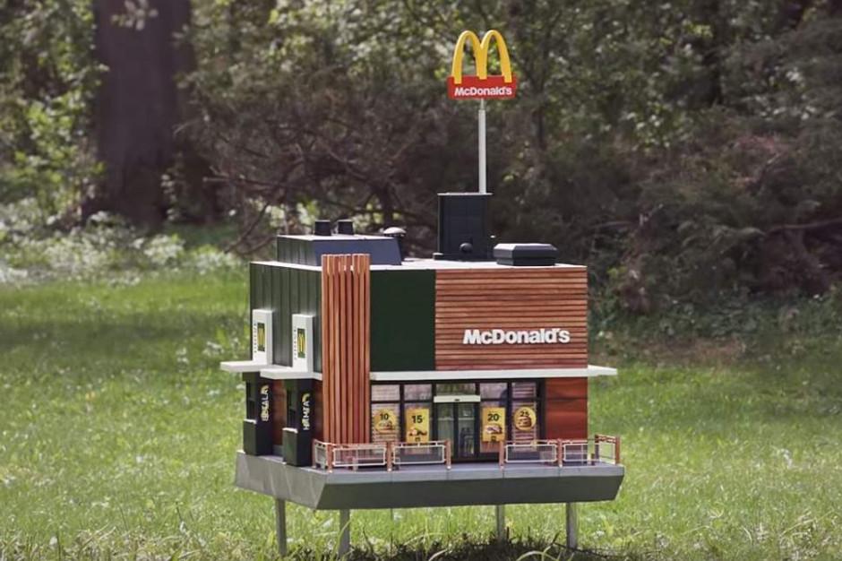 McHive: Powstał ul, który jest miniaturą restauracji McDonald's (video)