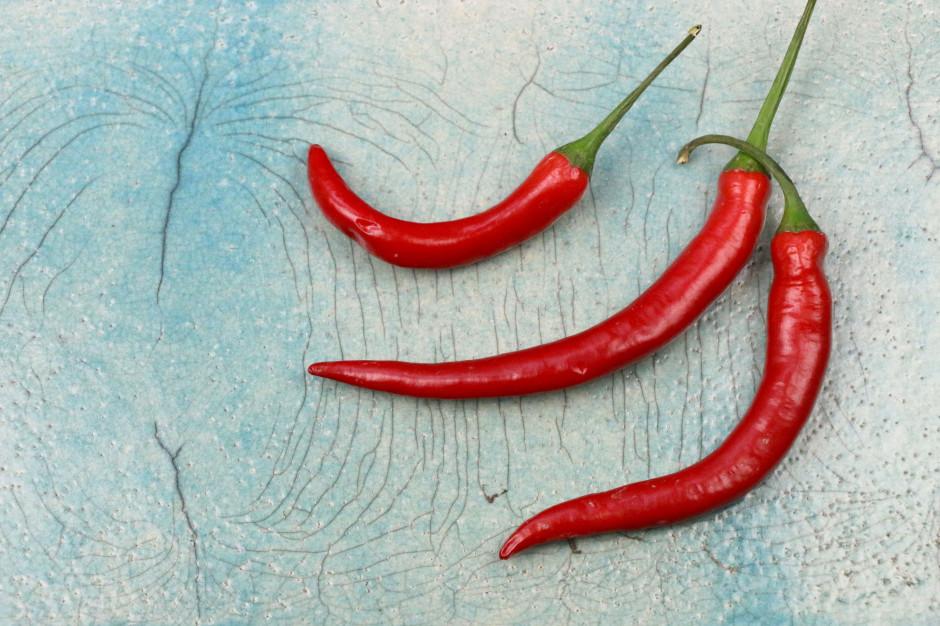 3 lipca Dniem Czerwonej Ostrej Papryczki Chili