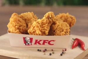 KFC zadba o dobrostan kurczaków