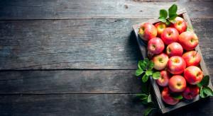 28 września świętujemy Dzień Jabłka