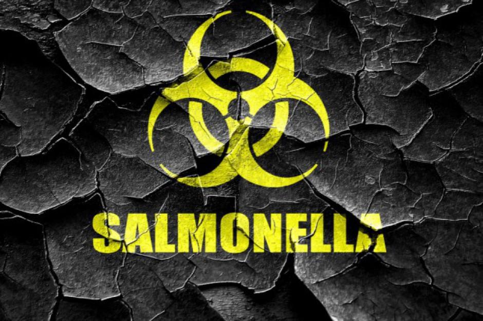 Salmonella w żłobkach i szkole. Dzieciom gotowała ta sama kuchnia