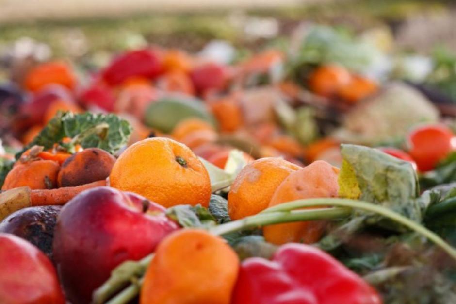 KOWR zbada, ile żywności naprawdę marnuje się w Polsce