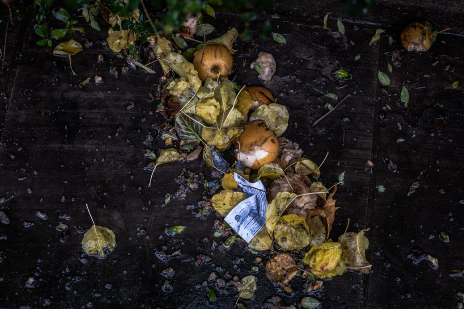 Badanie: 1/3 produkowanego jedzenia ląduje na śmietniku