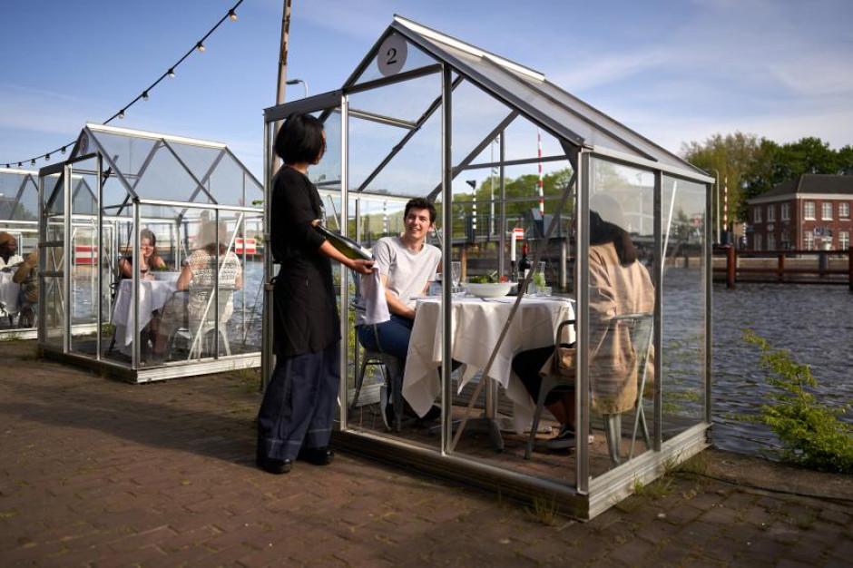 Wegański lokal w Amsterdamie zaprosi gości do... szklarni