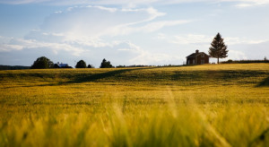 Minister rolnictwa: odpoczywajmy na wsi!