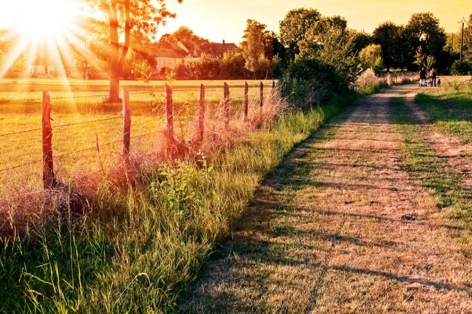 Agroturystyka: Ok. 60 proc. rezerwacji na wakacje już zajętych