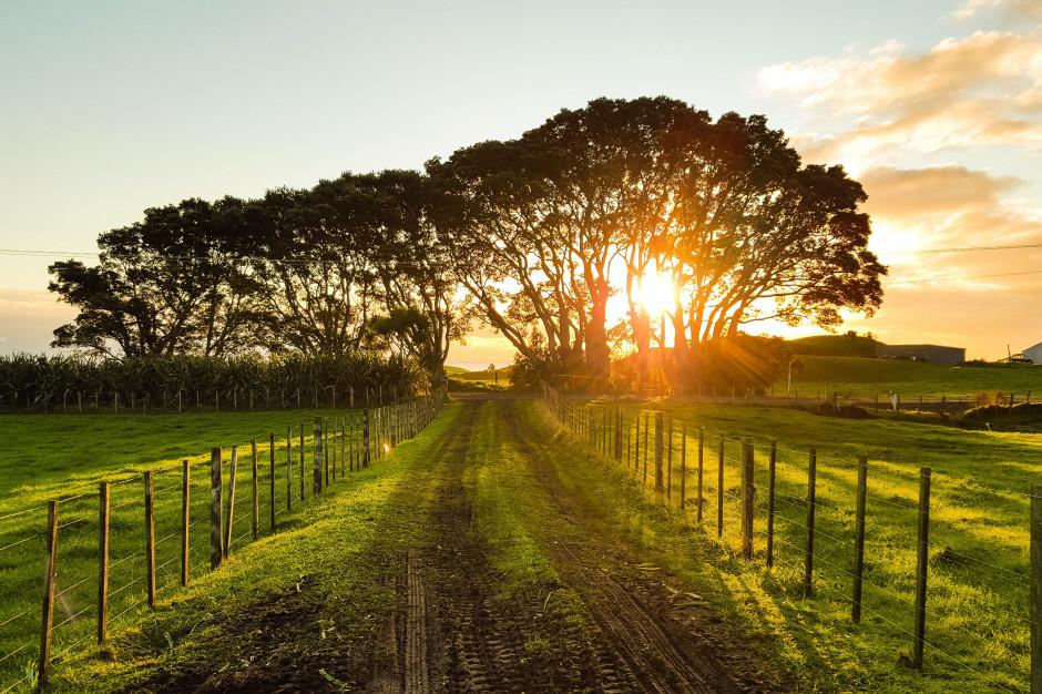 Agroturystyka święci triumfy. Do września nie ma wolnych miejsc
