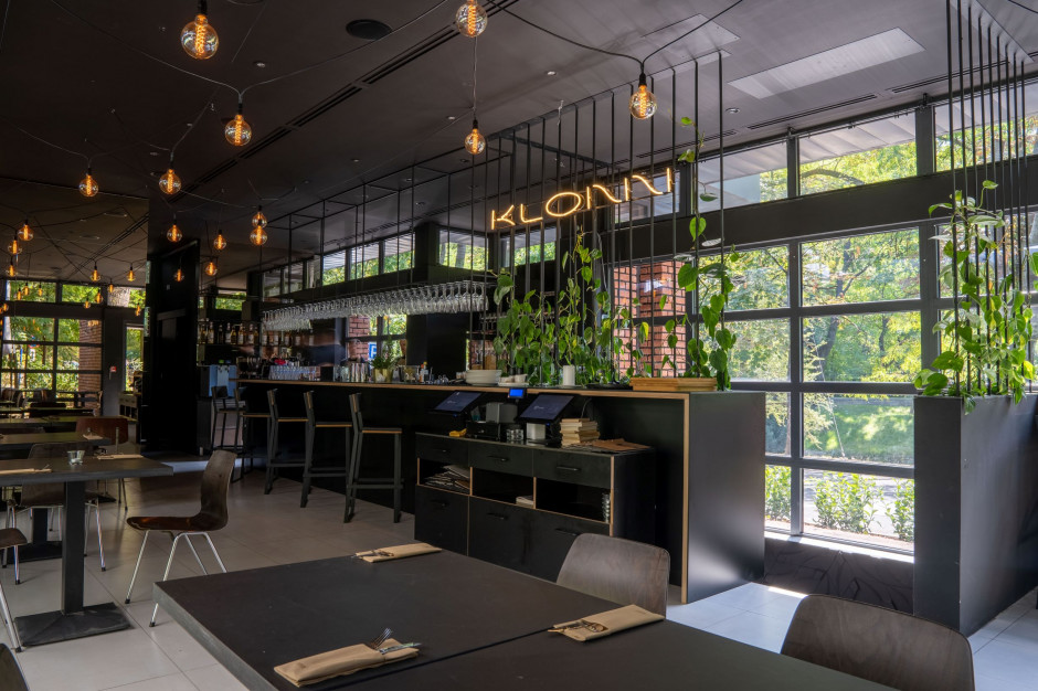 Restauracja KLONN – nowe miejsce właścicieli Zoni i WuWu bar, fot. materiały prasowe