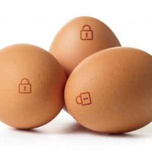 Ovovita wprowadza na rynek jaja kurze pasteryzowane w skorupie EggSafe