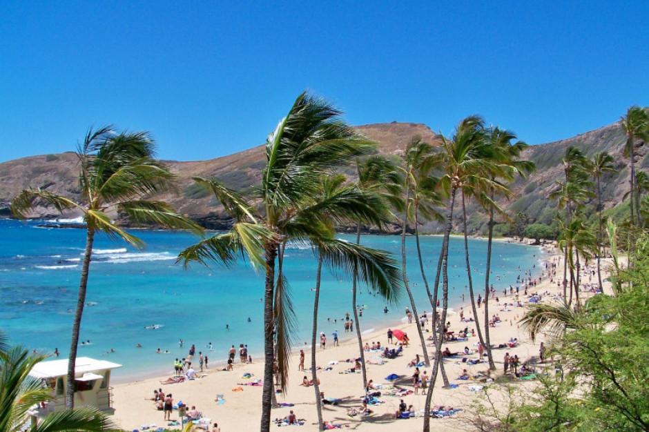 A może tak wszystko rzucić i polecieć na... Hawaje?