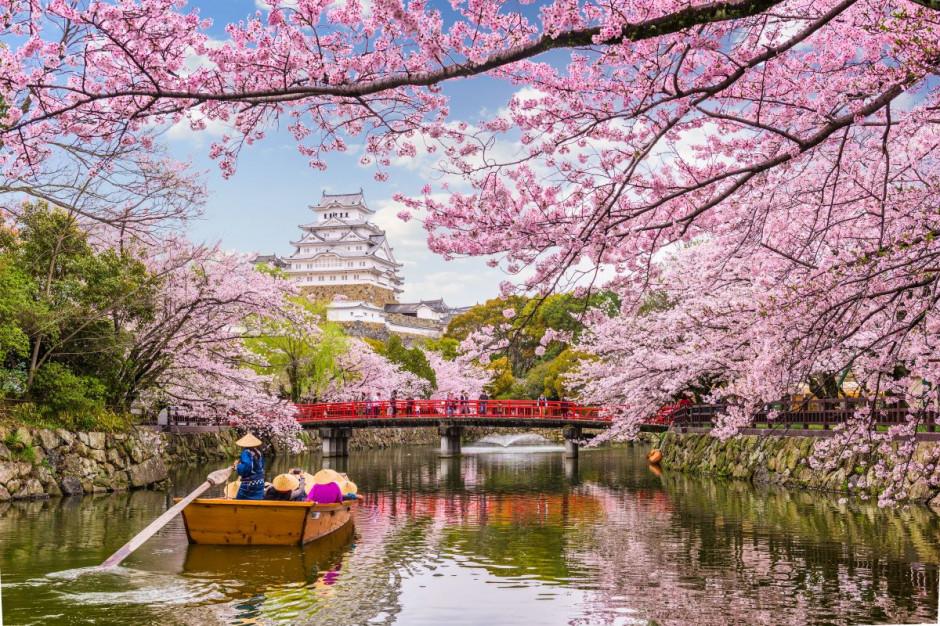 Japonia: Rząd nie przerywa kampanii turystycznej
