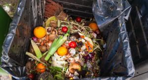 W Polsce 39 % żywności kupowanej w każdym tygodniu jedzenia trafia na śmietnik (badanie)