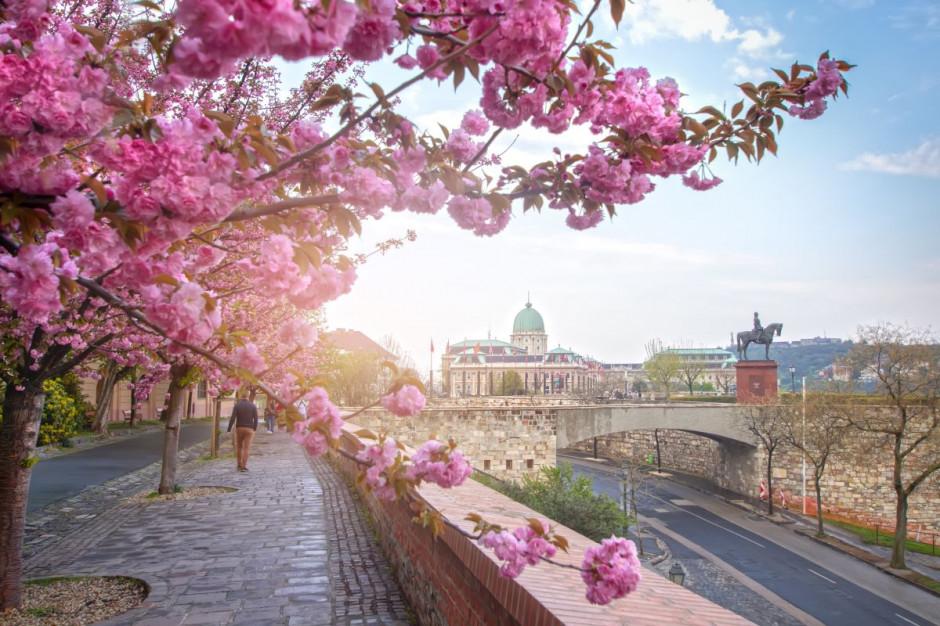 Polacy chętnie odwiedzali Węgry w 2020 r.
