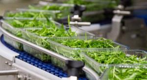 Green Factory przejmuje węgierskiego producenta sałat dla HoReCa