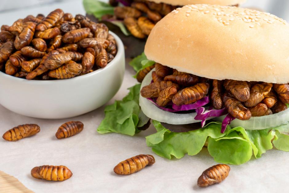 Burgery z owadów? Nowy trend może wkrótce dotrzeć do Polski